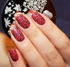 BORN PRETTY BP19 Nail Art Stamp Template Image Stamping Plate Leaves Pattern