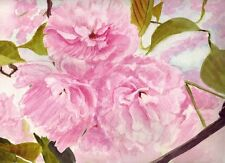 Cherry Blossoms  Original Watercolor Painting 9 x 12 inches