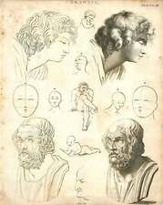1802  Drawing Facial Form Outline Infill Proportions Copperplate