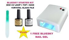 BLUESKY UV LED NAIL GEL POLISH STARTER KIT WHITE 36W UV LAMP+TOP+BASE+ FILE