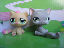 Retired LITTLEST PET SHOP Tabby Kitty CAT # CATS LPS x 2 LOT of TWO Rare D1