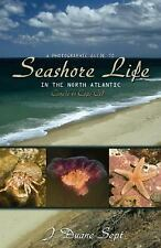 A Photographic Guide to Seashore Life in the North Atlantic: Canada to-ExLibrary