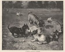 ART A WINDFALL BY REICHERT DOGS CHEWING HAT PARK