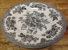 Royal Stafford Asiatic Pheasant Black Bird Toile 1 Salad Plate England Flowers