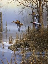 After the Thaw by Jim Hansel, Ducks, Hunting Print 13x17