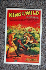 King of the Wild Chapter 2 The Tiger of Destiny Lobby Card Movie Poster