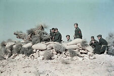 WW2 photo German in North Africa by Erwin Rommel #04