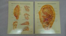 Multi-Chart For Ear Hand and Foot Chinese Alternative Remedies Medicine Health