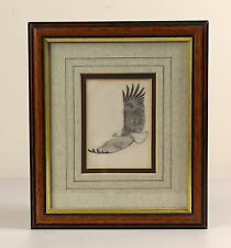 John Cyril HARRISON | fine ORIGINAL pencil sketch | FISH eagle bird ornithology
