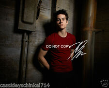 Teen Wolf MTV show Dylan O'Brien RP signed autographed photo #4 Maze Runner