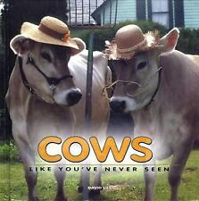 Cows Like You've Never Seen