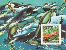 Sealife peces Killer Whale Dolphin Calamar République du Benin 2002 Mnh Hoja De Sellos