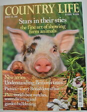 Country Life Magazine. July 13, 2011. Stars in their sties. Fine art farm animal