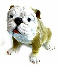 English Bulldog Puppy Dog Figurine Resin Statue Life Like Canine Home Garden Art