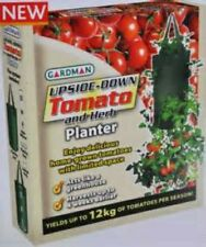 TINY TIM UPSIDE DOWN TOMATO SEEDS! COMB. S/H!