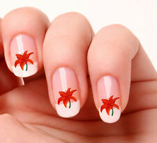 20 Nail Art Decals Transfers Stickers #331 - Flower Orange lily