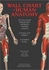 *New* WALL CHART OF HUMAN ANATOMY: 3D Full-Body Images (OVERSIZED)