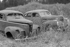 1939 Dodge in junk yard in tall over grown grass 8 x 10 Photograph