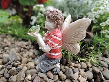 Miniature Garden Ethan Fairy with Frog New Dollhouse  Faerie 0082
