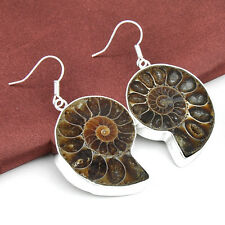 Woman Jewelry Real Genuine Ammonite Fossil Gemstone Silver Drop Earrings 2 Inch