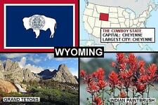 SOUVENIR FRIDGE MAGNET of THE STATE OF WYOMING USA