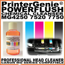 Head Cleaning Kit Fits: Canon PIXMA MG4250 7520 7750 -  Printhead Unblocker