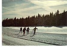 Fantaisie - cpsm - Ski de fond dans les Alpes
