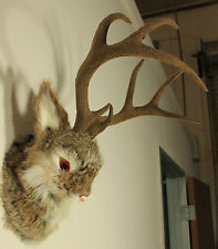 Brown Jackalope Head Wall Mount Rabbit Antlers Furry Animal Figurine Cabin Decor