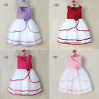 Princess Baby Kids Girls Xmas Flower Sleeveless Party Gown Formal Dresses 2-7Y