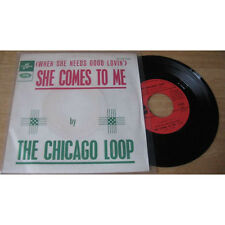 THE CHICAGO LOOP - She Comes To Me Ultra Rare French PS Garage Psych 66'