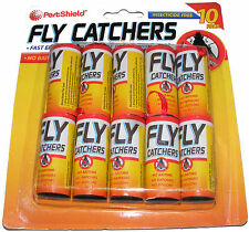 10 x clair papier collant pendaison fly trap tueur insecte catcher Bande Ruban