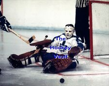 ALBINO Mask! Bruce GAMBLE Is DOWN For The SAVE Toronto MAPLE Leafs CUSTOM 8X10!!