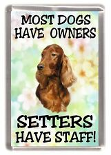 "Irish Setter Dog Fridge Magnet ""Most Dogs Have Owners Setters Have Staff"""