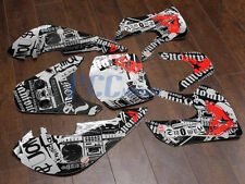 GRAPHICS DECAL FAMOUS STICKERS KIT FOR KAWASAKI KLX110 KLX 110 KX 65 H DE64