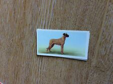 Vintage PRIORY TEA Trading Swap Card - I-SPY DOGS - No 16 1957 t2-1