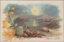 Victorian Trade Card-Donmeyer, Gardner & Co Flour-Peoria, IL-Sea of Galilee
