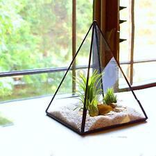 Irregular Glass Geometric Succulent Plant Planter Vase Box Terrarium Container