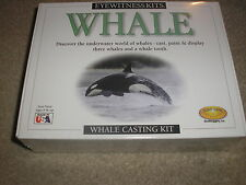 New Factory Sealed Eyewitness Kits Whale Skullduggery Ages 6 and up