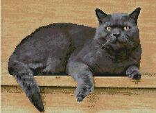 """Chat persan gris Compté Cross Stitch Kit 12 """"x 8.75"""" 30,7 cm x 22,3 cm"""