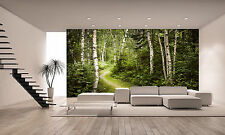 Green Summer Forest Wall Mural Photo Wallpaper GIANT DECOR Paper Poster