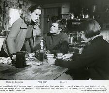 ANNE HEYWOOD SANDY DENNIS  KEIR DULLEA  THE FOX 1967 VINTAGE PHOTO ORIGINAL #2