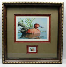 2014 Texas Waterfowl Duck Conservation Stamp Print Framed New Mint Cinnamon Teal