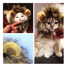 1x Costume Perruque Chapeau Chat Chien Déguisement Halloween Crinière Lion Fête