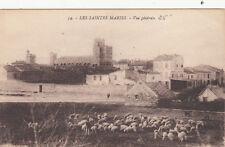 SAINTES-MARIES-DE-LA-MER 54 vue générale moutons photo vignal