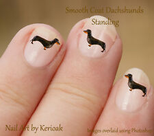 Dachshund Standing,   24 Unique Designer Dog Nail Art Stickers Decals