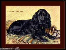 English Print Black Cocker Spaniel Puppy Dog Dogs Puppies Art Picture Poster