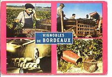 CP 33 GIRONDE - Vignobles de Bordeaux - Les Vendanges