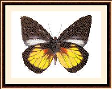 Butterfly 8509, Cross Stitch Kit