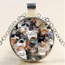 Photo Cabochon Glass Silver charms Pendant Necklace lots of cats