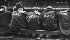 1950's NFL FOOTBALL Game Bench CHICAGO BEARS Athletes Sports Photo Art 11x14
